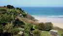 Coastal Walks in Carbis Bay